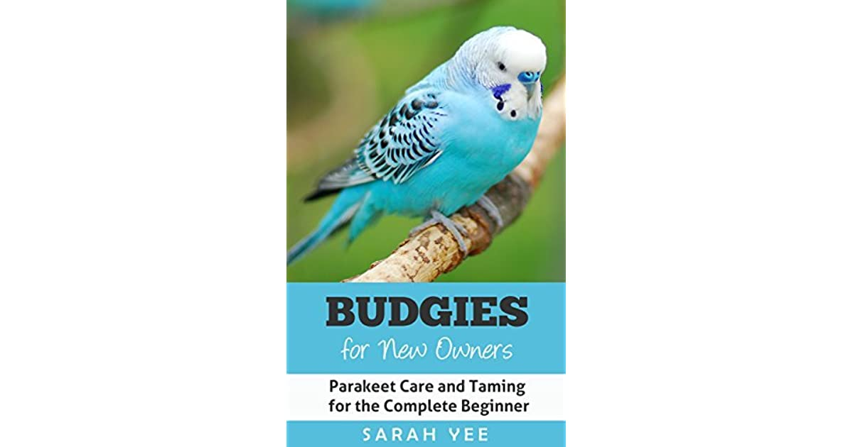 Budgies for New Owners: Parakeet Care and Taming for the