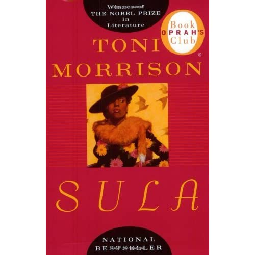 search for identity in toni morisons sula Toni morrison's sula demonstrates its female protagonist as a postmodern individual living by a postmodern philosophy, in a modernist novel that essentially blurs binaries.