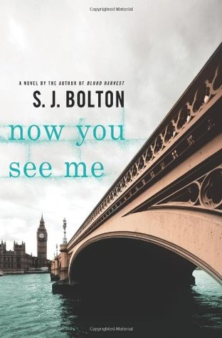 Now You See Me (Lacey Flint, #1)