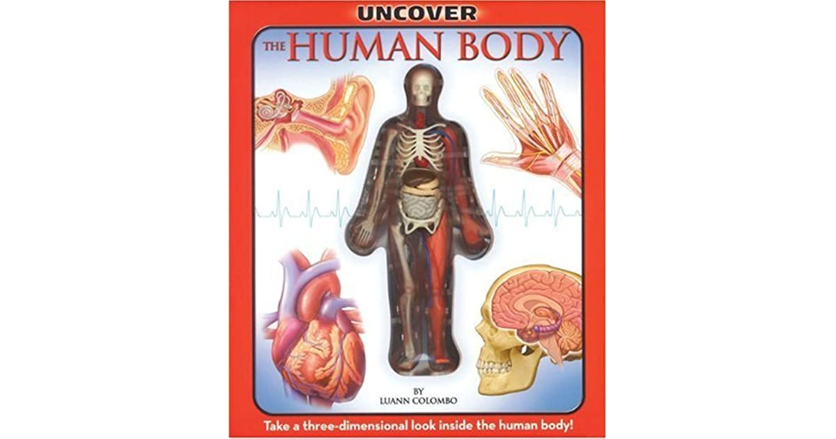 Uncover The Human Body By Luann Columbo