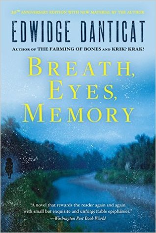 breath eyes memory critical essays