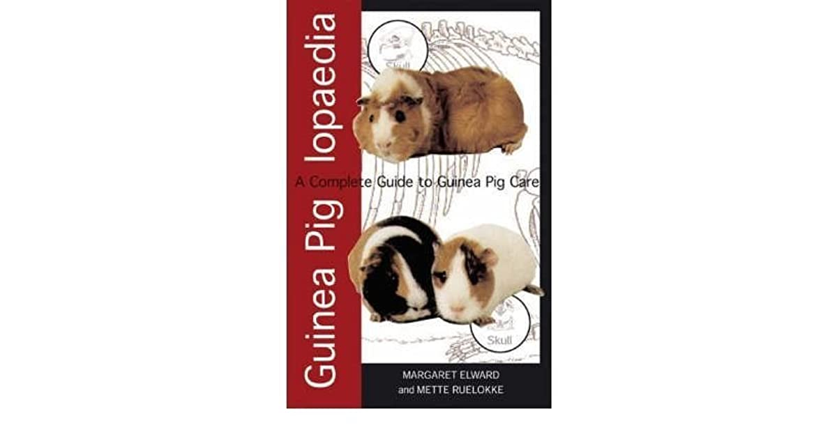 Guinea Piglopaedia: a Complete Guide to Guinea Pigs by Margaret Elward