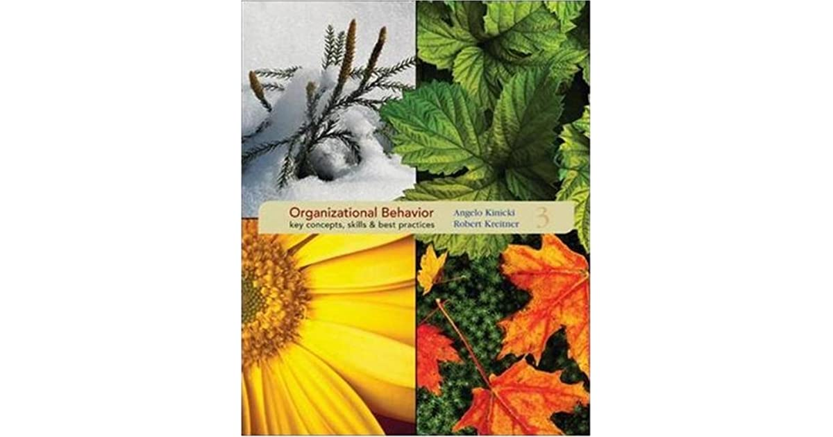 organizational behavior key concepts skills best practices by organizational behavior key concepts skills best practices by angelo kinicki