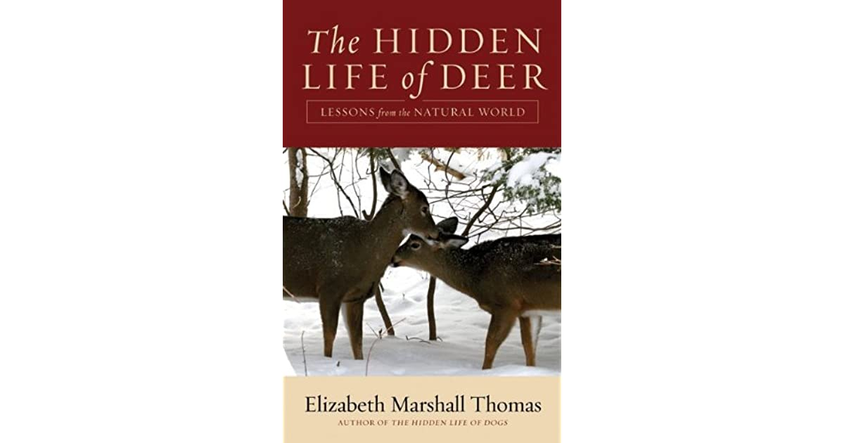 a literary analysis of the hidden life of dogs by elizabeth thomas Essay the hidden life of dogs: book review the hidden life of dogs was written by elizabeth thomas who is currently well know and highly re-spected for her books.