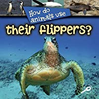 How Do Animals Use Their Flippers?