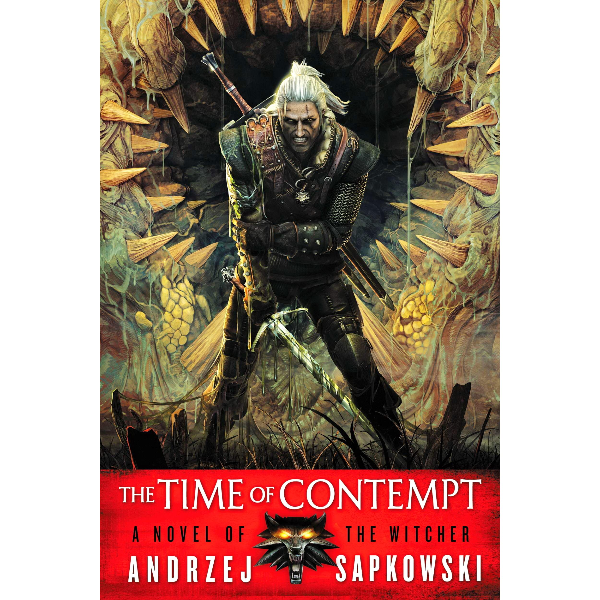 The Time of Contempt (The Witcher, #2) by Andrzej Sapkowski