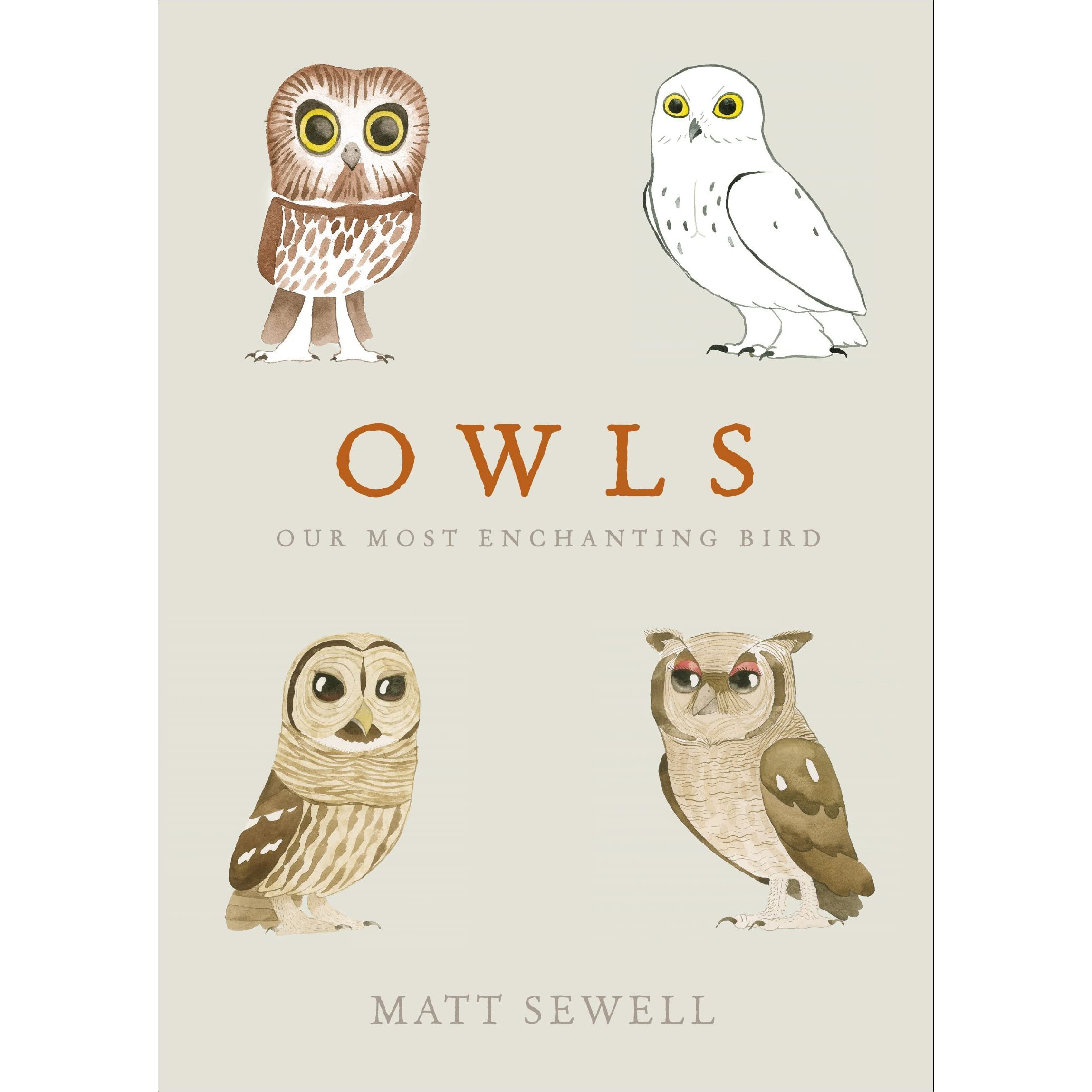 Owls: Our Most Enchanting Bird By Matt Sewell €� Reviews, Discussion,  Bookclubs, Lists