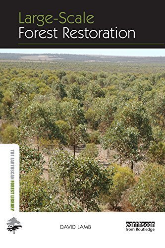 Large-scale Forest Restoration (The Earthscan Forest Library)