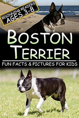 Boston Terrier: Fun Facts & Pictures For Kids, Beginning Readers Ages 3-8