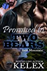 Promised to Two Bears (Bear Mountain, #4)