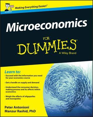Microeconomics for Dummies - UK