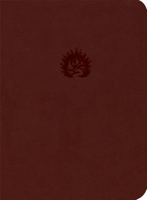 ESV Reformation Study Bible, Brick Red, Leather-Like by R.C. Sproul