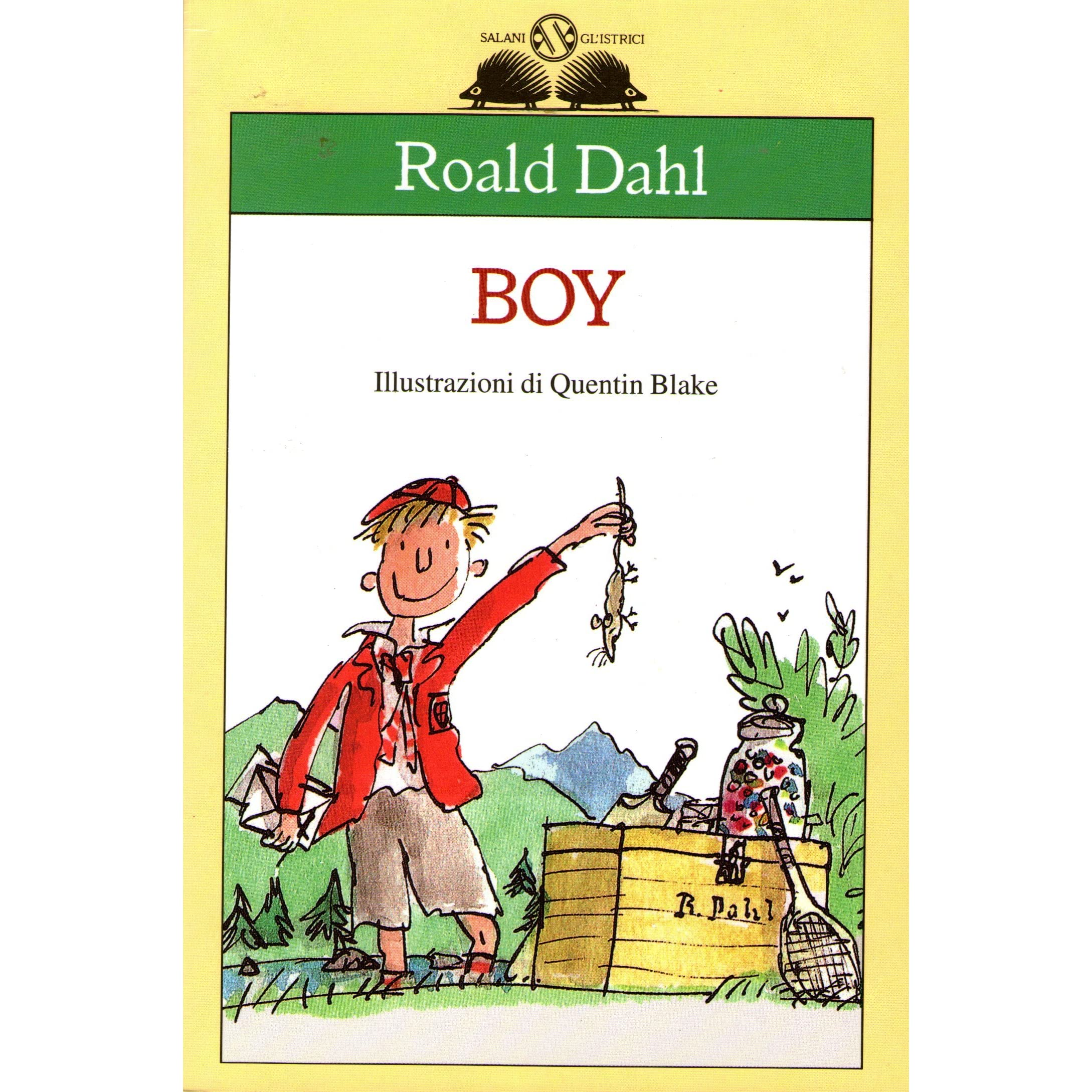 boy essay roald dahl Roald dahl the british children's author was born september 13, 1916 in llandaff, wales he was the only son of the marriage and one of seven children.