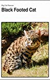 Black Footed Cat: Interesting Little Wild Cat