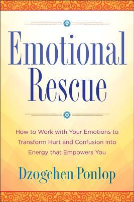 Emotional Rescue  How to Work with Your Emotions to Transform Hurt and Confusion Into Energy That Empowers You
