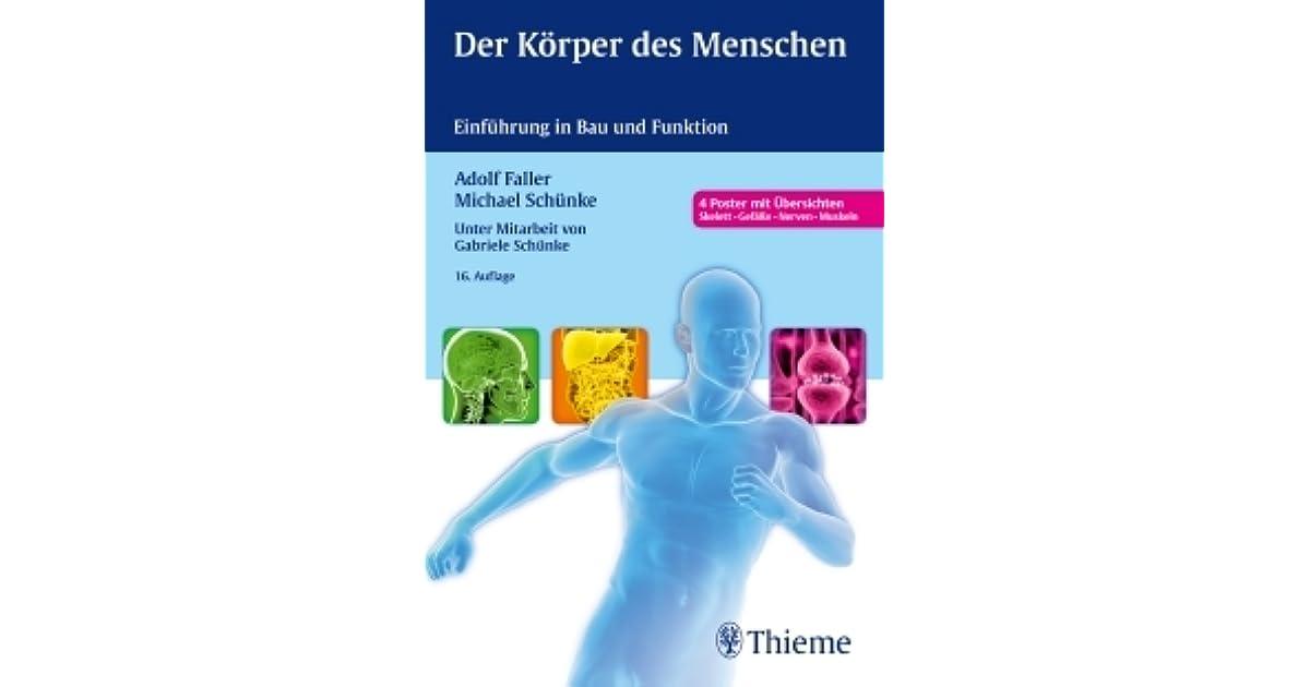 Der Körper Des Menschen. Einführung In Bau Und Funktion by Adolf Faller