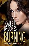Burning (PAVAD: FBI Romantic Suspense, #10)