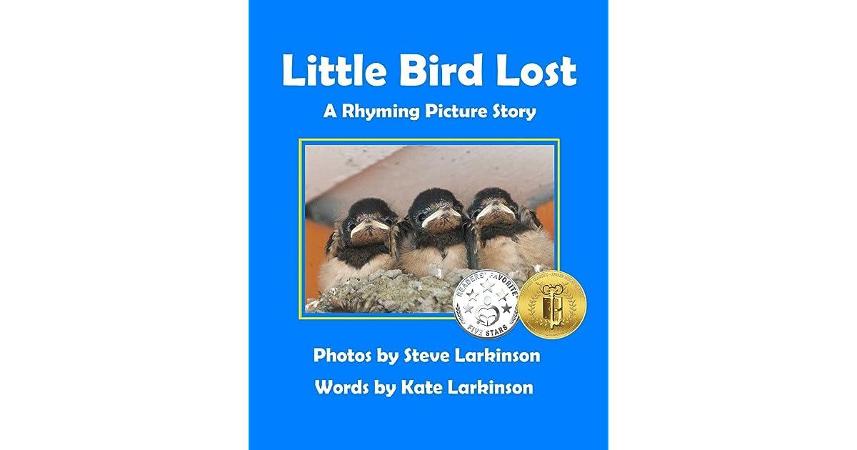 Little Bird Lost: A Rhyming Picture Story by Kate Larkinson