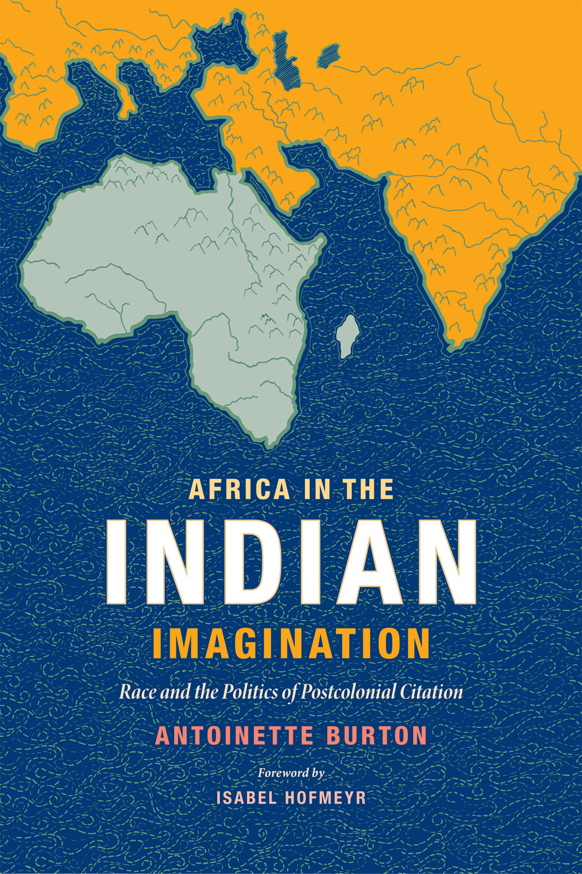 Africa in the Indian Imagination Race and the Politics of Postcolonial Citation