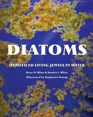 Diatoms: Unnoticed Living Jewels in Water