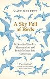 A Sky Full of Birds by Matt Merritt