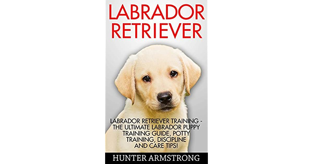 Labrador Retriever The Ultimate Labrador Puppy Training Guide Potty Training Discipline And Care Tips By Hunter Armstrong
