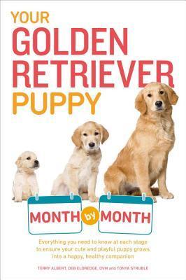 Your Golden Retriever Puppy