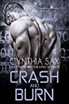 Crash And Burn (Cyborg Sizzle, #3)