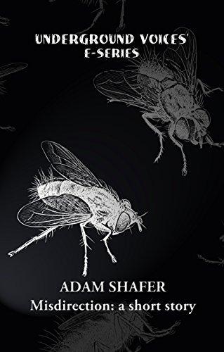 Misdirection  by  Adam R. Shafer