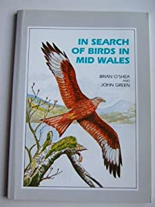 In Search of Birds in Mid-Wales