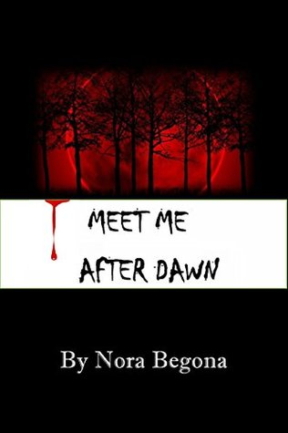 Meet me after Dawn: He was determined to finish his task and not fall in love. But fate had another plan for him. (Endless Book 1)