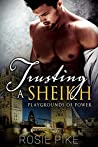 Trusting a Sheikh (Playgrounds of Power, #1)