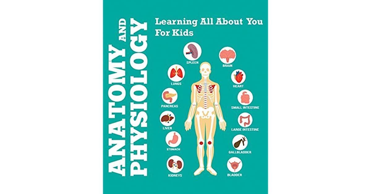 Anatomy And Physiology: Learning All About You For Kids: Human Body ...
