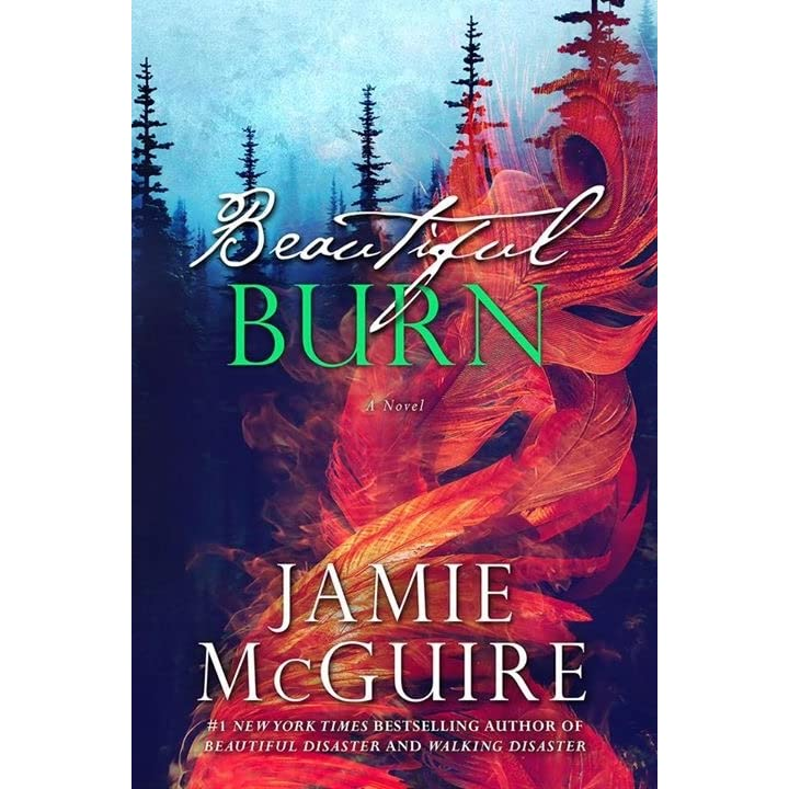 beautiful burn the maddox brothers 4 by jamie mcguire