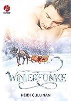 Winterfunke (Minnesota Christmas, #2)