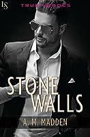 Stone Walls (True Heroes, #1)