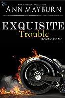 Exquisite Trouble (Iron Horse MC, #1)