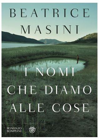 I nomi che diamo alle cose by Beatrice Masini