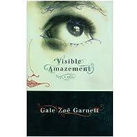 Visible amazement: A novel