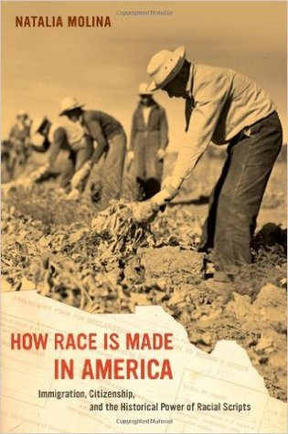 How Race Is Made in America: Immigration, Citizenship, and the Historical Power of Racial Scripts