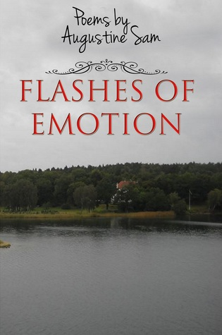 Flashes of Emotion by Augustine Sam