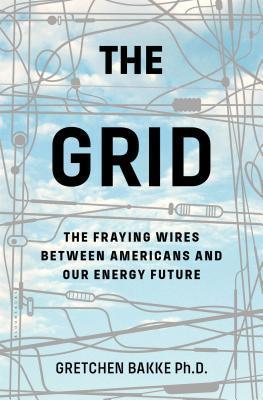The Grid: Electrical Infrastructure for a New Era