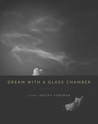 Dream with a Glass Chamber