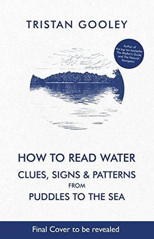Ask Expert Unraveling Clues >> How To Read Water Clues Patterns From Puddles To The Sea By