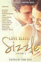 Love Slave: Sizzle (Love Slave #5)
