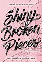 Shiny Broken Pieces (Tiny Pretty Things, #2)
