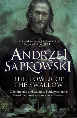 The Tower of the Swallow (The Witcher, #4)
