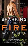Book cover for Sparking the Fire (Hot in Chicago, #3)