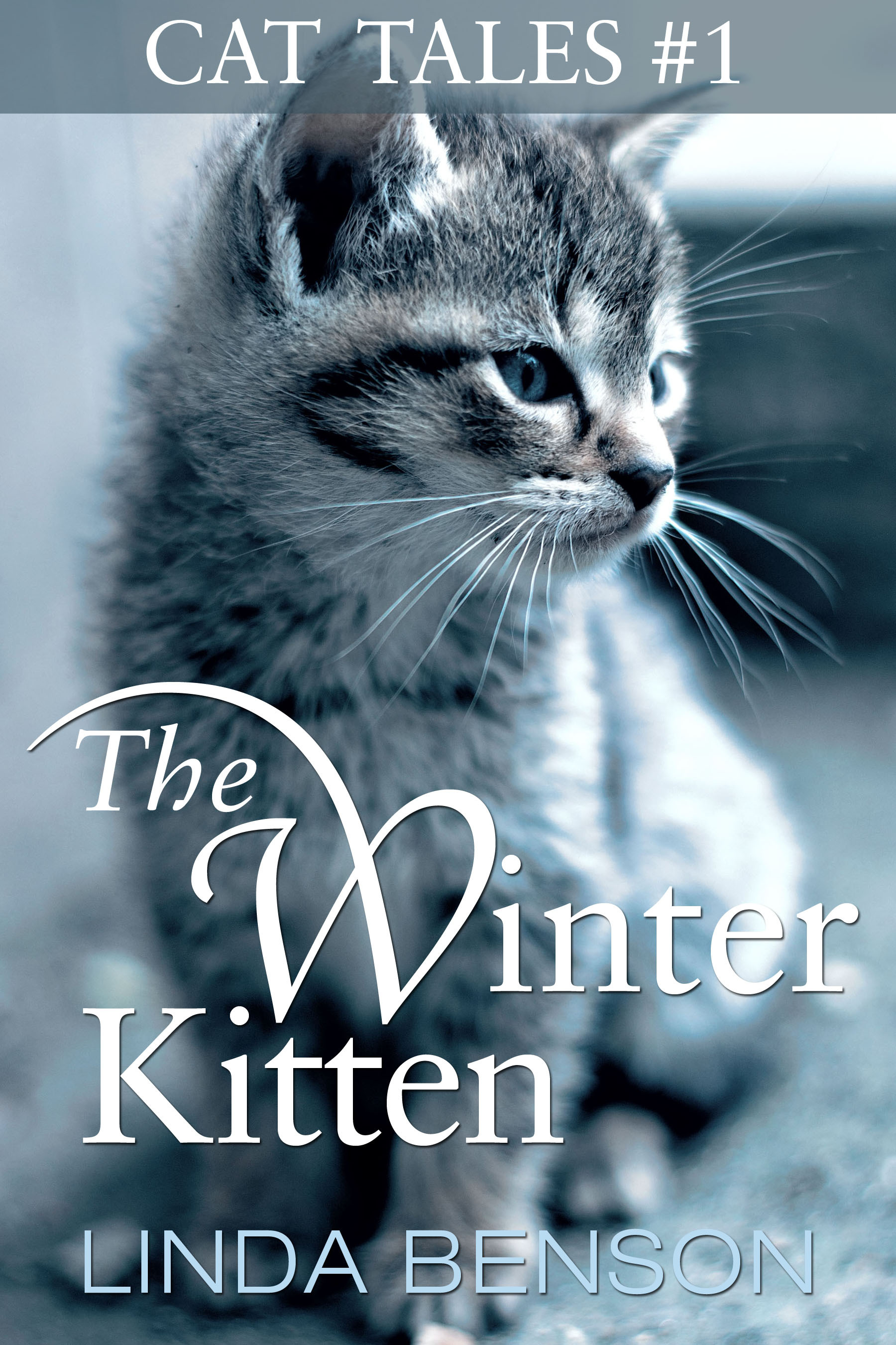 The Winter Kitten