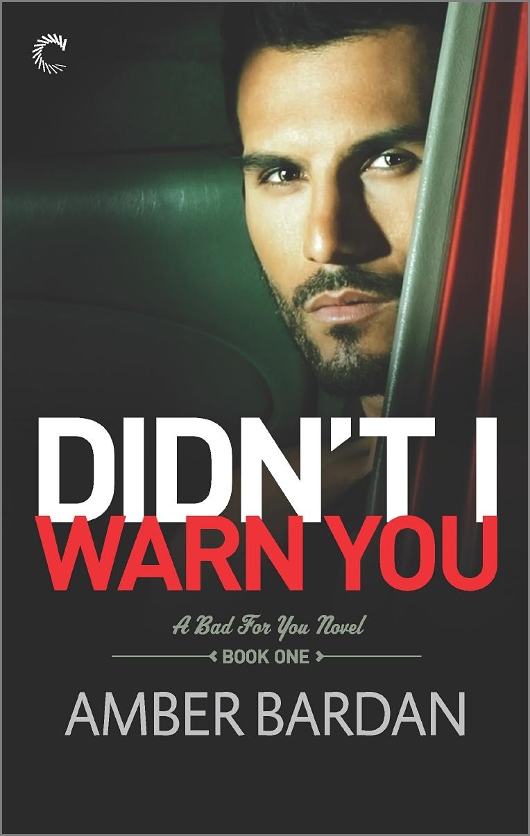Didnt I Warn You  by  Amber A. Bardan